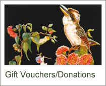 Gift Vouchers/Donations
